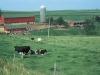 Tư vấn chuyển đất phi nông nghiệp lên đất thổ cư